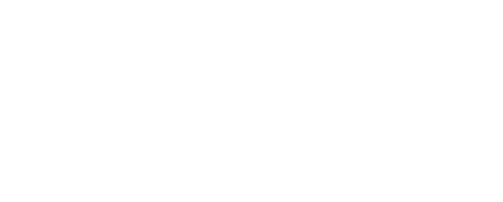 Metropolitan State University Institute for Professional Development