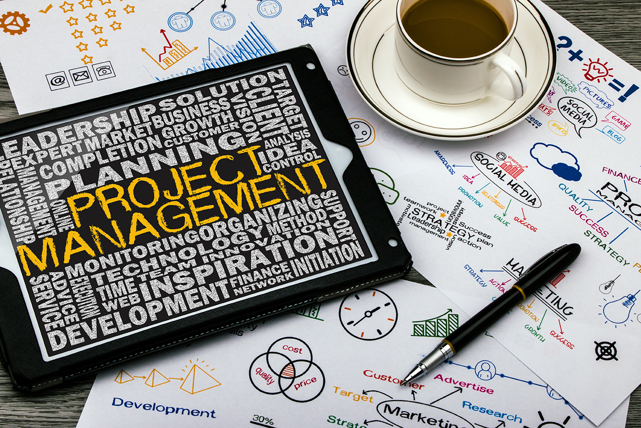 Mn professional business development management leadership project management 1betcityfo Image collections