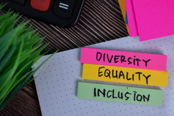 Five Criteria For High-Quality Diversity Training